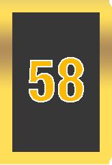 Buy a Wheel of Cash raffle- number 58